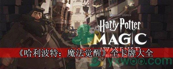《哈利波特:魔法觉醒》全卡牌大全