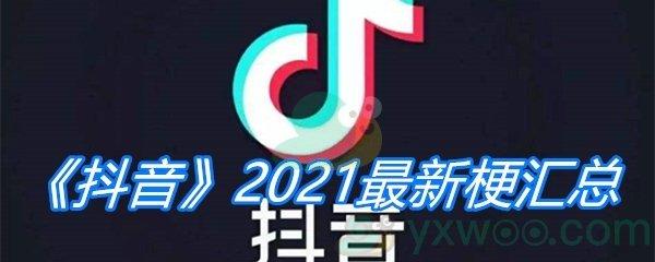 《抖音》2021最新梗汇总
