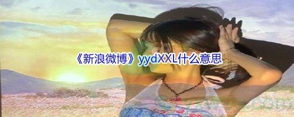 yydXXL是什么意思