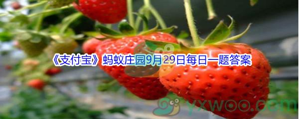 2021《支付宝》蚂蚁庄园9月29日每日一题答案(2)
